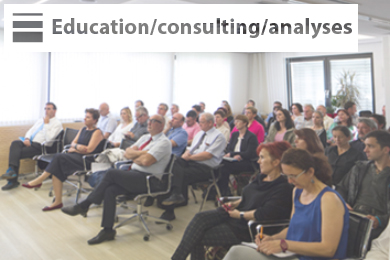 Education/consulting/analyses